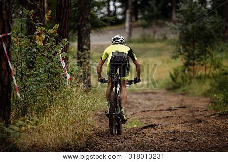 Athlete Cyclist Riding Downhill  To Mountainbike In Forest Trail