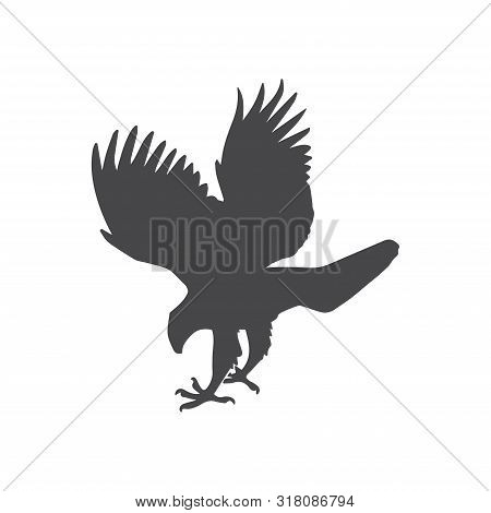 Hawk Bird Icon Isolated On White Background. Hawk Bird Icon In Trendy Design Style For Web Site And