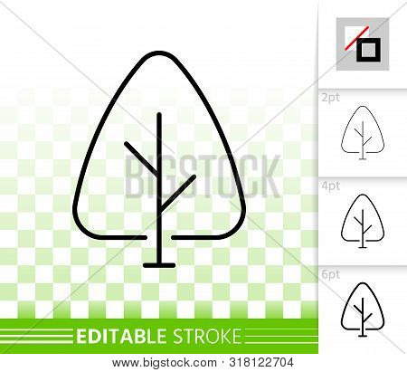 Geometric Tree Thin Line Icon. Outline Sign Of Abstract Sapling. Poplar Linear Pictogram With Differ