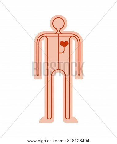Human Circulatory System Cartoon. Body Anatomy. Vector Illustration