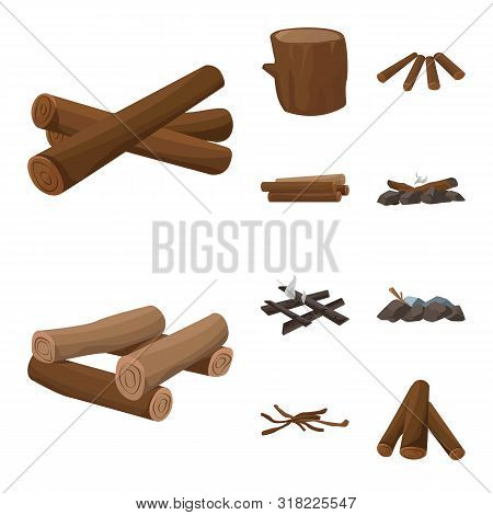 Isolated Object Of Timber And Nature Icon. Set Of Timber And Construction Stock Vector Illustration.