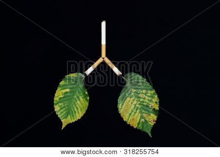 Leaves As Symbol Of The Lungs Of Man And Planet Earth Affected By Tobacco Smoke, Carcinogens And Cig