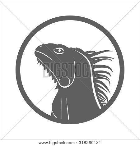 Iguana Graphic Icon. Iguana Head Grey Sign In The Circle Isolated On White Background. Vector Illust