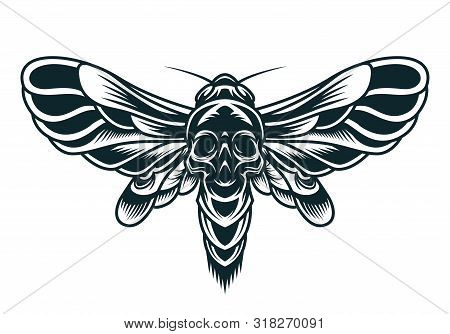 Scary Bee Monochrome Concept With Spooky Skull Silhouette On Abdomen Isolated Vector Illustration