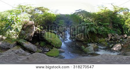 Mountain River In The Rainforest Through The Green Jungle 360vr. River In The Green Forest. Camiguin