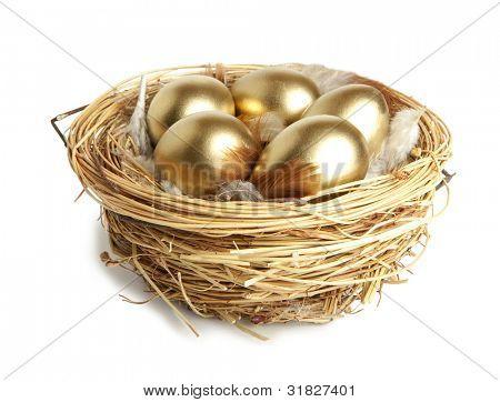 Golden egg in the nest  isolated