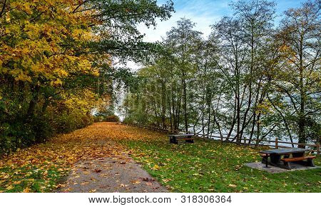 Autumn Landscape In A Park With An Area Equipped With Picnic Tables And A Hiking Trail Strewn With Y