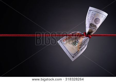 American Dollar Tied Up In Red Rope Knot On Dark Background With Copy Space. Business Finances, Savi