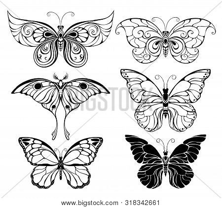 Set Of Artistically Drawn, Outline, Black Butterflies On A White Background. Butterflies. Element Of