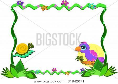 Frame of Nature, Parrot, and Snail