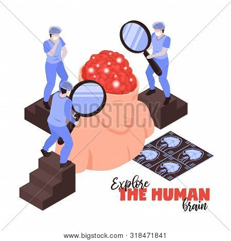 Neurologists With Magnifying Glasses Research Human Brain Anatomy Functions Diseases Pathology Treat