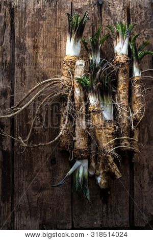 Horse Radish. Fresh Horseradish Roots On Wooden Table.ingredient For Cooking Spices.