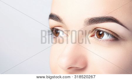 Woman With Beautiful Eyebrows Close-up On A Light Background With Copy Space. Microblading, Microsha