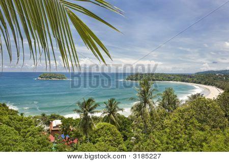 Tropical Bay