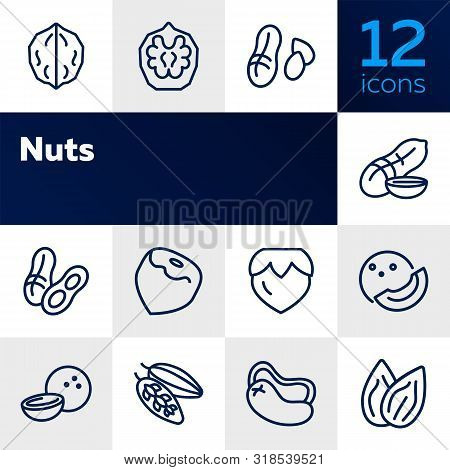 Nuts Line Icon Set. Peanut, Hazel Nut, Almond. Food Concept. Can Be Used For Topics Like Vegan Diet,