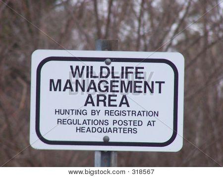 Wildlife Managment Area