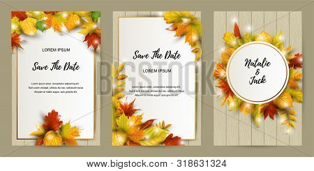 Wedding Invites Set With Falling Leaves. Autumn Background Vector Illustration. Place For Text. Grea