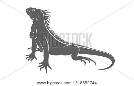 Iguana Graphic Icon. Iguana Gray Sign Isolated On White Background. Vector Illustration