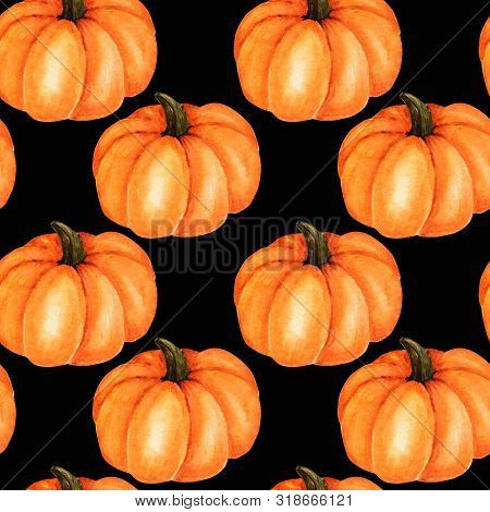 Seamless Pattern Watercolor Painted Collection Of Orange Pumpkin. Cartoon Style Hand Drawn Fresh Veg