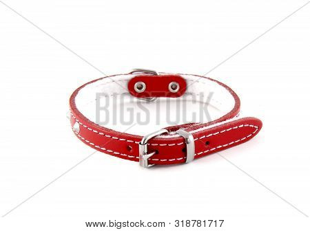 Red Leather Collar Isolated Over White Background. It Is A Stylish Collar For Small Dogs.