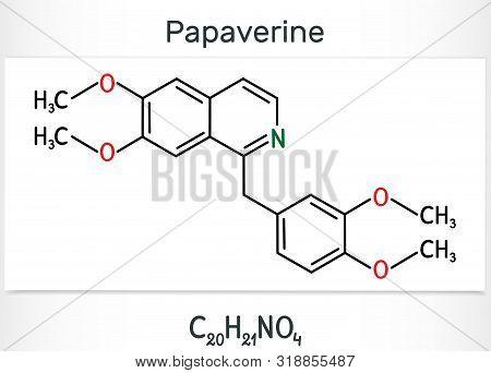 Papaverine Molecule. It Is Opium Alkaloid Antispasmodic Drug. Structural Chemical Formula. Vector Il