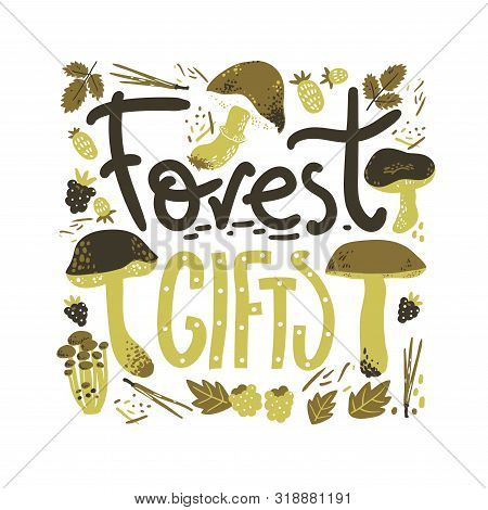 Forest Gifts Rlettering Poster. Mushrooms And Berries. Linocut Old Style. Hand Drawn Vector Illustra