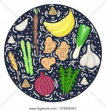 Prebiotic Food. Nutrition. Nondigestible Fibers. Gastrointestinal Health. Healthy Diet Supplement. C