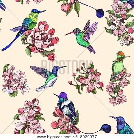 Template For Wedding Invitation. Card Vector Illustration With Apple Blossom And Hummingbird.