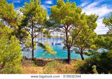 Telascica Bay Nature Park Yachting Destination Of Dugi Otok Island, Dalmatia, Croatia