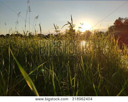 Beautiful Sunset Over The River In Green Summer Grass Wallpaper. Natual Sunset Background