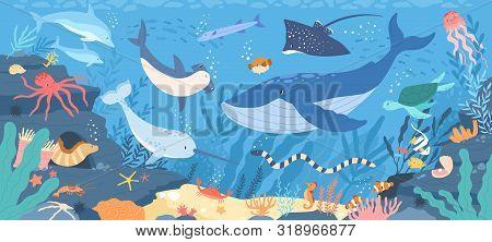 Fish And Wild Marine Animals In Ocean. Sea World Dwellers, Cute Underwater Creatures, Coral Reef Inh