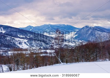 Winter Countryside In Mountain. Gloomy Overcast Weather. Village In The Distant Valley. Frozen Leafl