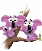 A happy family of koala bears all sitting in a tree together and looking lovingly toward one another. poster