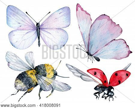Watercolor Insects Blue And Pink Butterflies, Bumble Bee And Flying Ladybug Isolated On The White Ba