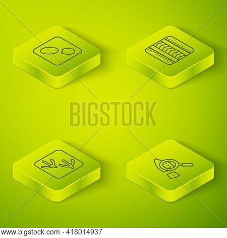 Set Isometric Line Tire Track, Dove Paw Footprint, Magnifying Glass With Footsteps And Human Footpri