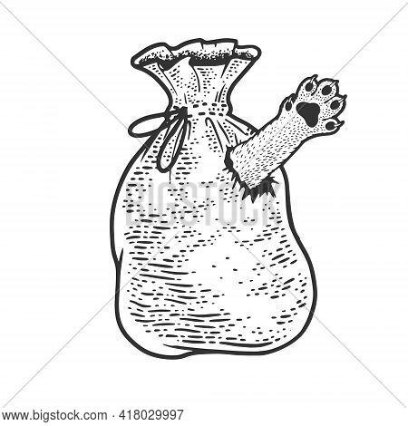 Cat In Bag Poke Sketch Engraving Vector Illustration. T-shirt Apparel Print Design. Scratch Board Im