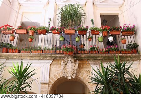 Bari Old Town - Architecture In Apulia, Italy. Balcony Garden With Geranium Flower Pots And Dracena