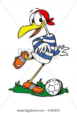 Soccer Fan Seagull
