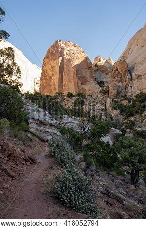 Dirt Trail Through Desert Scene Up To White Rocks On The Golden Throne Trail