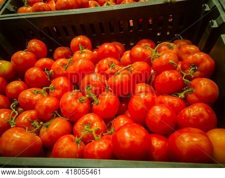 Ripe Tomatoes Are Sold Among Vegetables In The Supermarket.