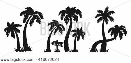 Coconut Palm Tree In Island Black Silhouette Set. Tropical Palm Trees, Nature Design Element. Hand D