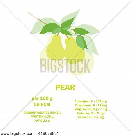 Information About Nutrition Facts Pear Fruit. Infographic Card About Calories Of Pear 100g. Vitamins