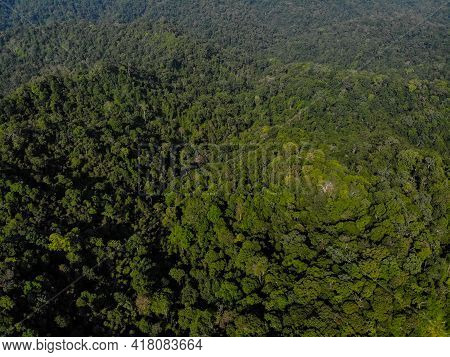 Aerial Shot Landscape Forest Green Mountain Morning Time. Tropical Rain Forest National Park Jungle