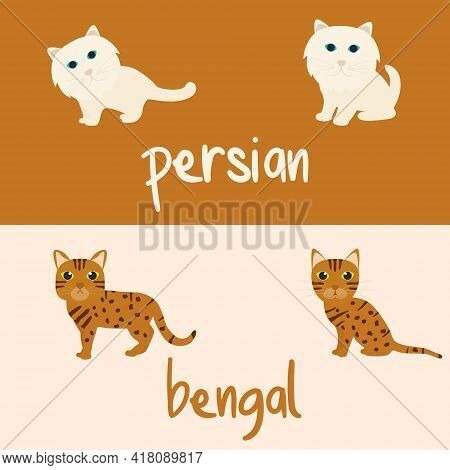 Cute Cat Breeds Cartoon Animal Illustration Type Of Persian And Bengal To Background Or Wallpaper
