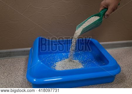 Dry Friable Filler For Cat Litter Is Collected And Poured Into A Plastic Tray With A Scoop, Pet Hygi