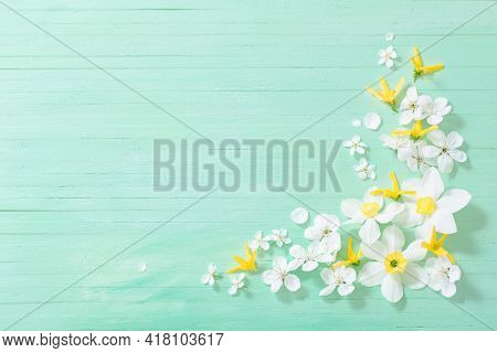 Daffodils And Cherry Flowers On Green Wooden Background