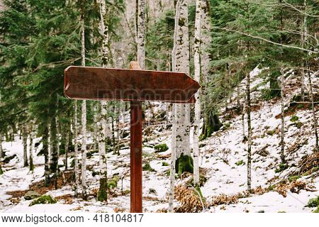 Wooden Signpost With An Empty Field Stands On A Hill Among A Coniferous-deciduous Forest In Winter