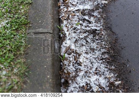 Hail. Hail On Green Grass And Asphalt. Snow Balls After Rain In Spring.weather Phenomenon