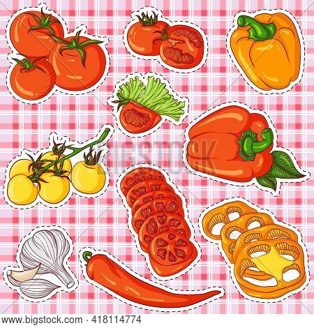 Vector Illustration Set Of Stickers With Tomatoes, Peppers And Paprika On A Plaid Background. Hand D
