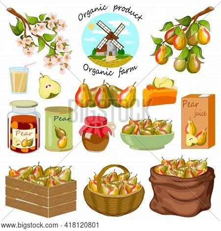 Set Of Vector Elements With Pears.ripe Pears And Products From Them On A White Background In A Color
